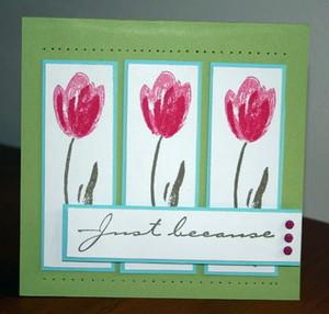 Sa_terrific_tulips