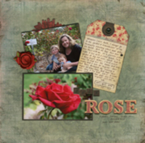 Dads_rose_small