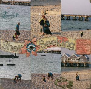 Shell_seeking_1